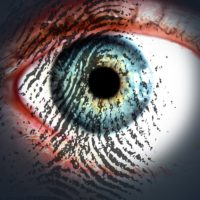 Data protection: the biometric approach